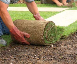 North Wales turf and topsoil laying turf